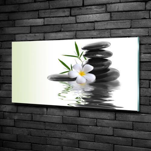 Wandbild aus Plexiglas® Druck auf Acryl 100x50 Blumen /& Pflanzen Zen Steine