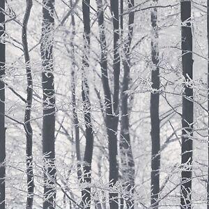 arthouse frosted holz glitzer schwarz und wei silber buche baum tapete 670200. Black Bedroom Furniture Sets. Home Design Ideas