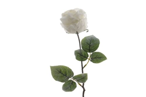 Blume Seidenblume Rose Seidenrose weiß 60 cm