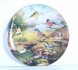Collection-Plate-Tirschenreuth-Bird-Grande-Finale-With-Certificate
