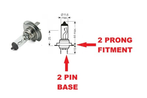 Audi A4 B7 05-08 8EC Main//HIGH Beam Headlight Bulbs Headlamp 12V 55W H7 Halogen