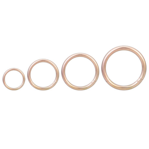 4 Pcs 16G Stainless Steel Hinged Nose Rings Septum Tragus Helix Eyebrow Piercing
