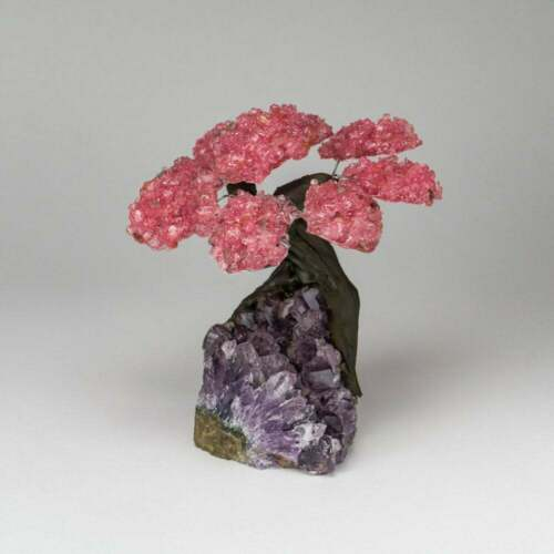 Rose Quartz Clustered Gemstone Tree on Amethyst Matrix The Lov Medium