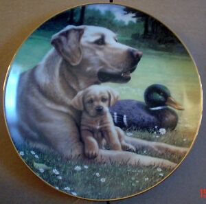Hamilton-Collection-Collectors-Plate-LIKE-FATHER-LIKE-SON