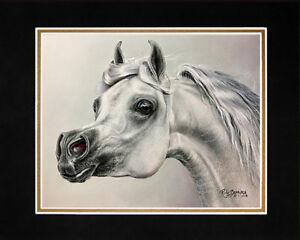 Matted-034-Arabian-034-Horse-Art-Giclee-Print-8-034-x10-034-Mat-by-Artist-Roby-Baer-PSA