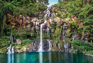 Carta Da Parati Foresta Tropicale : Tessuto non carta da parati gigante cm cascata verde