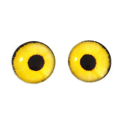 16mm Yellow Sparrow Hawk Bird Realistic Taxidermy Jewelry Art Doll Glass Eyes