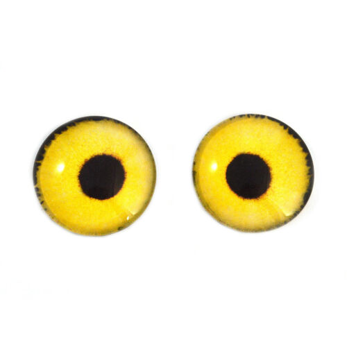 Glass Eyes 14mm Yellow Sparrow Hawk Bird Realistic Taxidermy Jewelry Art Doll