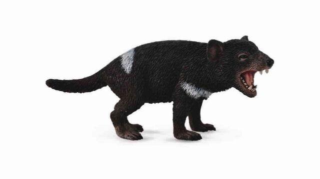 NEW CollectA 88656 Tasmanian Tassie Devil - Wild Life Australia 7.7cm