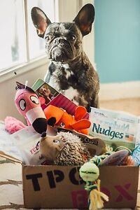 Get your dog a box full of goodies!