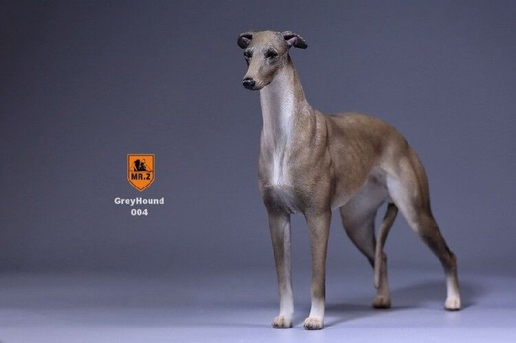 Mr.Z GD004 Real Animal Series No.14 Greyhound Dogs 1 6