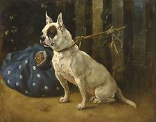 Fine Large 19th Century French Bulldog Dog Portrait Antique Oil Painting Signed