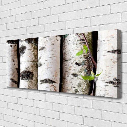 Leinwand-Bilder Wandbild Canvas Kunstdruck 125x50 Bäume Natur