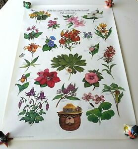 """Vintage SMOKEY BEAR FLOWERS POSTER - """"Why Be Careful With Fire... Pick a Reason"""""""