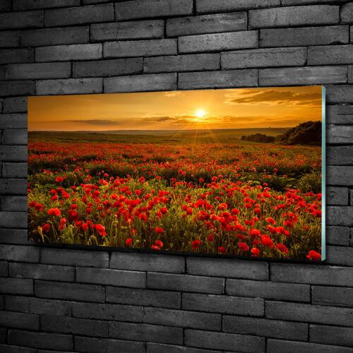 Glas-Bild Wandbilder Druck auf Glas 100x50 Deko Landschaften Mohnfeld