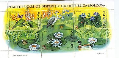 Fiori Acquatici Stamps Water Flowers Moldova 2008 Block Lovely Luster