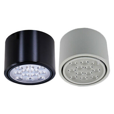 Dimmable/N 12W LED Ceiling Light Fixture Downlight Surface Mount Cylinder Lamp