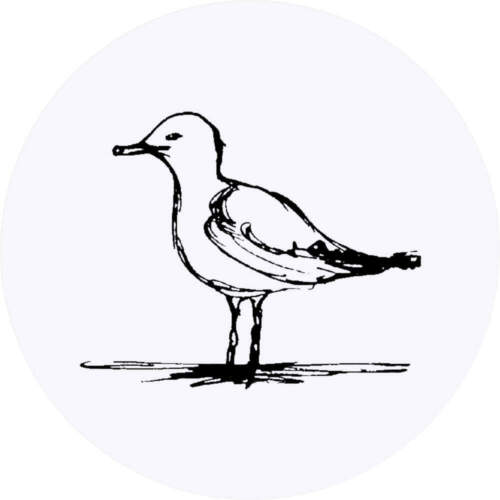 SK00003008 24 x 40mm Round /'Seagull/' Stickers