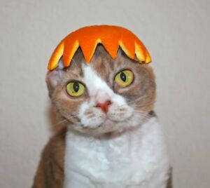 c15956a18 USA Pet Cosplay Costume Lion Mane Wig Hat for Dog Cat Halloween With ...