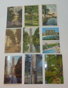 Vintage-Antique-Postcards-FLORIDA-Lot-of-63-Great-Lot