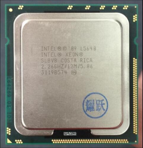 Intel Six-Cores Xeon E5645 E5649 L5638 L5639 L5630 L5640 LGA1366 Desktop CPU