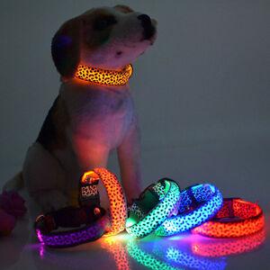 Collar-Luminoso-luz-Led-para-Perro-Gato-Protector-Correa-de-Seguridad-Proteger