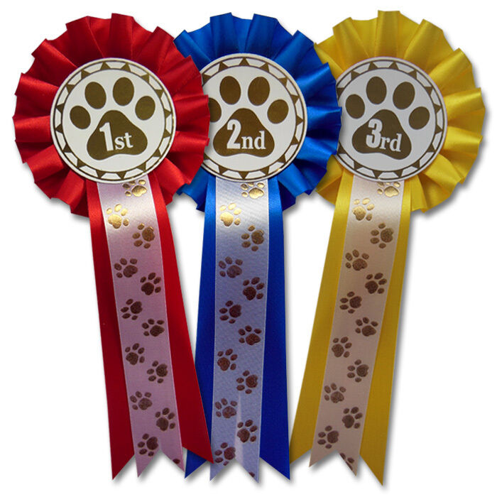 Dog Show Rosettes 1st-3rd 2 Tier With FREE Printed Paw Print Tails FREE POSTAGE