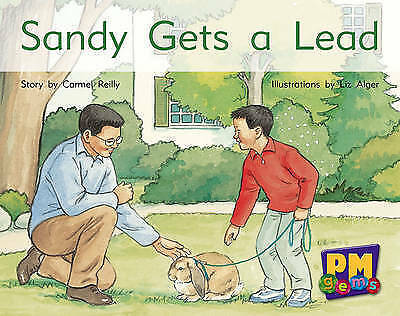 (Good)-Sandy Gets a Lead PM GEMS Yellow Levels 6,7,8 (Paperback)-Various, X-0170