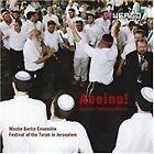 Moshe Berlin - Aneinu (Hasidic-Orthodox Music, 2008)