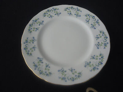 queen anne bone china sonata forget me nots  8598 dinner plate