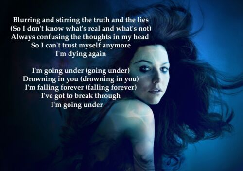 Going Under American Rock Band Lyrics Vocalist Picture Poster Evanescence