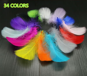 9e34610e6 Image is loading Wholesale-50pcs-100pcs-Natural-Goose-feathers-6-10cm-