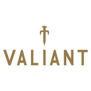 Valiant Fireside Accessories