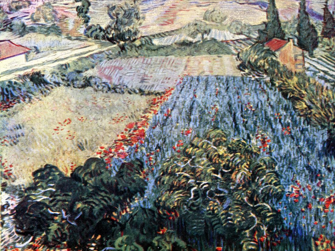 The Poppy Field - Van Gogh  Canvas or Print Wall Art