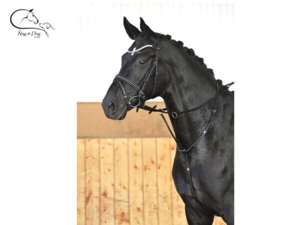 Disciplinato Busse Diamante Dettaglio In Esecuzione In Pelle Kincade Da Corsa Pony Nero Completo Consegna Gratuita
