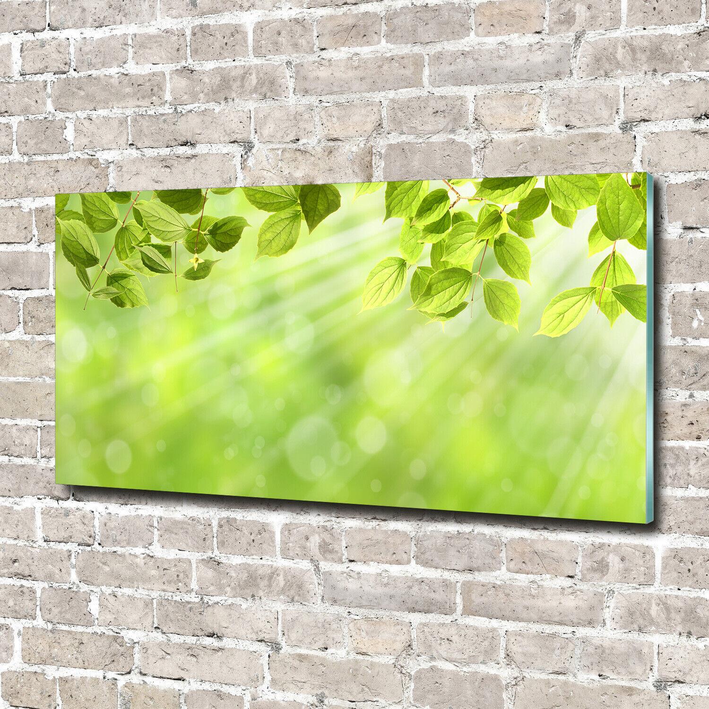 Wandbild aus Plexiglas® Druck auf Acryl 140x70 Blaumen & Pflanzen Laub