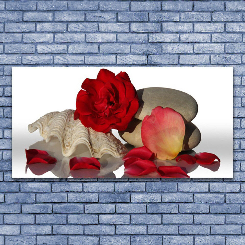Canvas print Wall art on 140x70 Image Picture Rosa Conch Conch Conch Stones Art a6d79b
