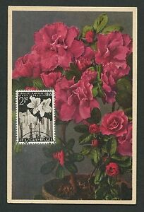 Belgique Mk 1955 Flore Azalées Flower Maximum Carte Carte Maximum Card Mc Cm C9423 Avoir à La Fois La Qualité De TéNacité Et De Dureté
