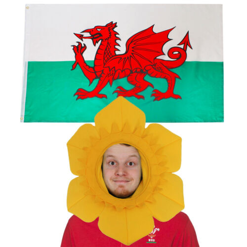 WELSH FLAG /& DAFFODIL HAT FUNNY SUPPORTERS SET NATIONAL SPORTS RUGBY FANCY DRESS