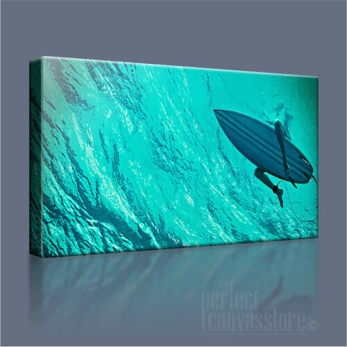 THE SHALLOWS DEEP SEA SURF BOARD ICONIC CANVAS ART PRINT PICTURE Art Williams