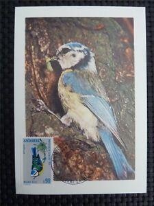 ANDORRA-MK-1973-FAUNA-VOGEL-BIRDS-MAXIMUMKARTE-CARTE-MAXIMUM-CARD-MC-CM-c822