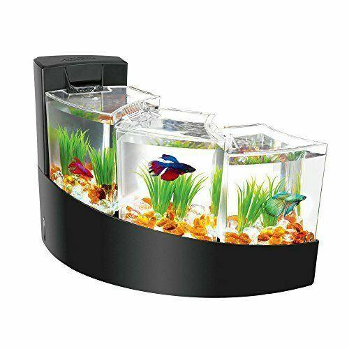 Coffee Table Aquariums For, Round Aquarium Coffee Table