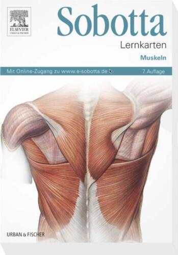 1 von 1 - Sobotta Lernkarten Muskeln von Lars Bräuer (7. Aufl. 2013, Box) - NEU/OVP