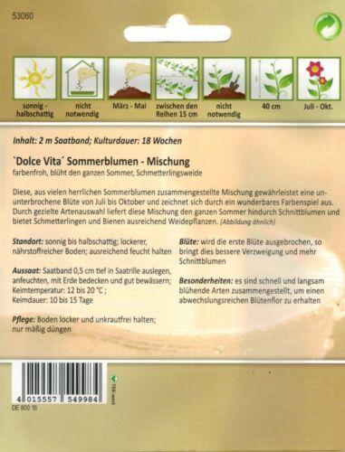 53060 Dolce Vita Sommerblumen Mischung Saatband für Balkon /&Terrasse