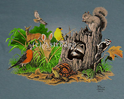 FROG CIRCLE--Bull Leopard Tree Peeper Amphibian Science Nature Kids T shirt XS-L