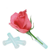 25pcs Plastic Nutrition Tube For Rose Plant With Cap Wedding Party Flower Decor