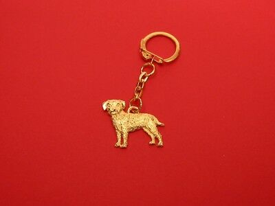 Border Terrier Pewter Keyring Free Pouch Pet Vet Mum Dad
