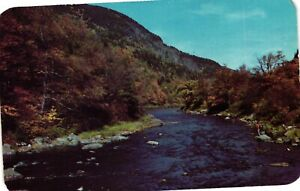 Vintage Postcard - Ausable River West Branch Lake Placid New York NY #1730
