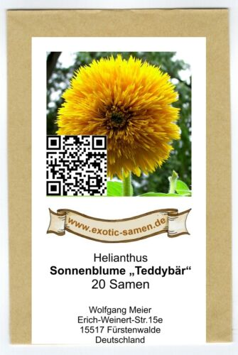 20 graines Helianthus-tournesol-NOUNOURS