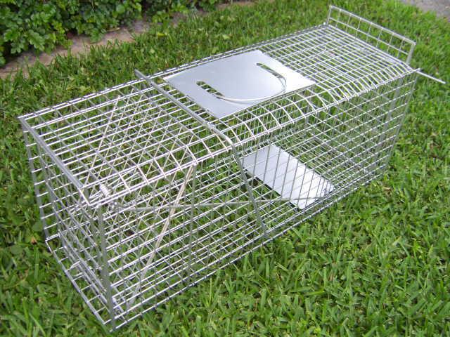 TRAP LARGE Humane possum cat fox rabbit bird animal cage live catch